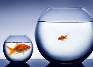 Business structures and restructures: Is your structure working against you?